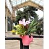 Florero cactus con imán