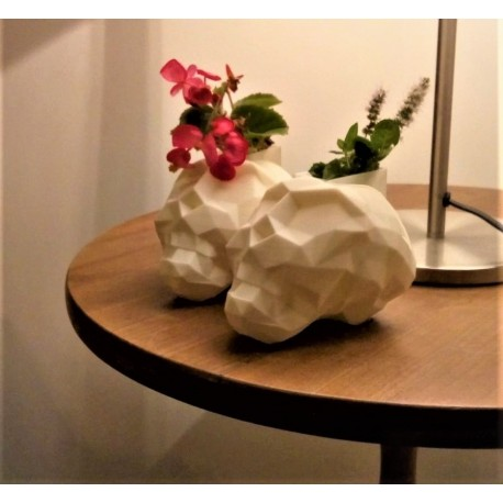 skull pot white presentation