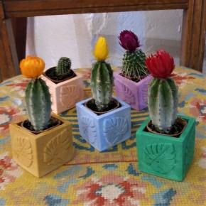 Mini vase cubique avec feuille de monstera