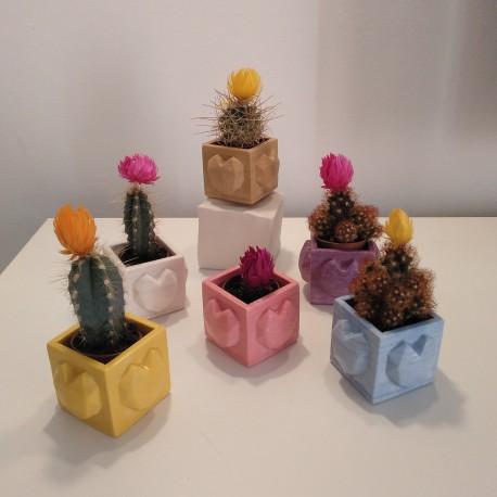 Mini Pot cubique Coeur