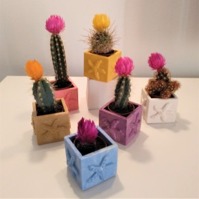 Mini Cubic Star Flowerpot