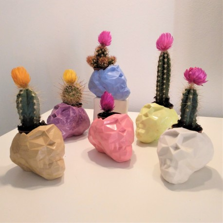 Mini Skull Flowerpot