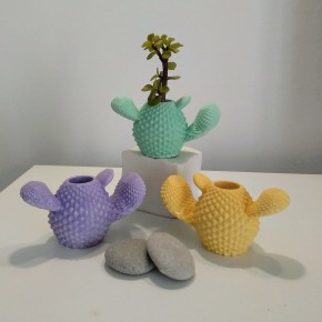 Mini cactus vase