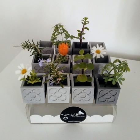 Set of 10 Mini Pot Cubic Panots, Rose tile of Barcelona