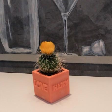 """Mini Pot cubique """"LOVE - HAPPY"""""""