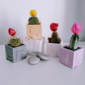Mini Pot cubique Souvenirs de Barcelone