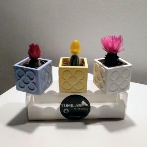 3 Mini Cubic Pots Panots