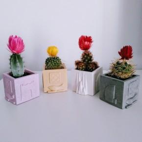 3 mini pots cubiques souvenirs de Barcelone