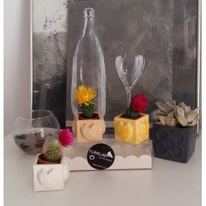 3 mini pots cubiques magnétiques coeurs, mini vases