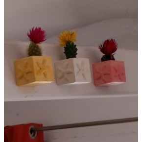 3 Mini starfish cubic magnetic pots, mini vases