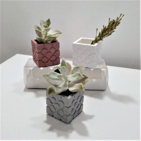 3 mini macetas cúbicas roseta de Bilbao