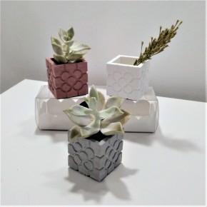 3 mini vases cubiques rosette de Bilbao