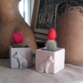 Mini Pot cubique Chats et Panots