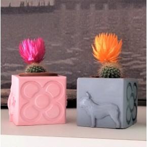 Mini Pot cubique Chiens et Panots