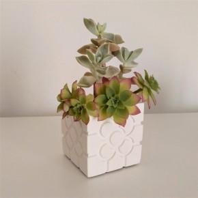 Bilbao rosette cubic pot
