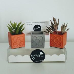 3 Mini floreros tarjeteros Panots, Porta nombre Panots