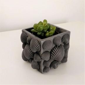 Shells cubic cache pot