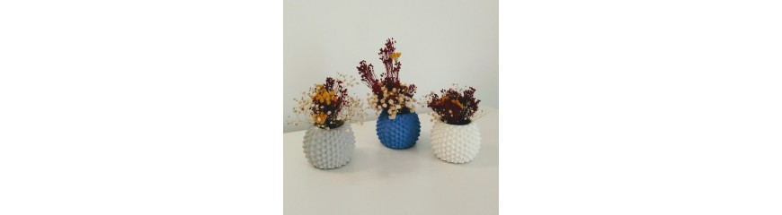 Hedgehog pot, sea urchin, cactus vase